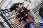 09.08.2010 20:13<br/>Foto: Jindra Kawi Kavina